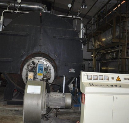 STEAM BOILER / PROODOS / 1989 / 10 TONS